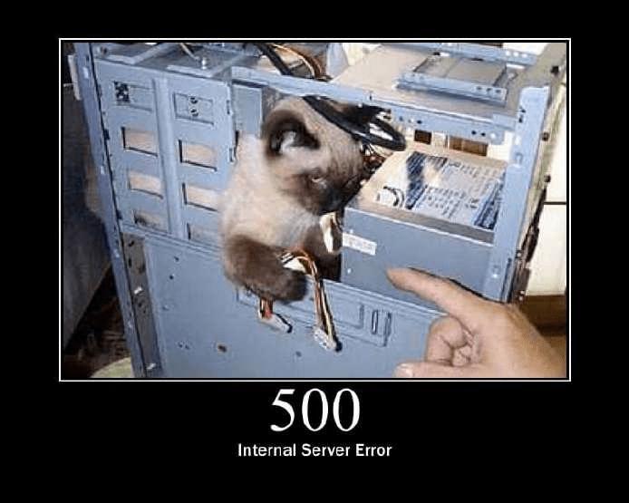 500 Internal server error - kitten meme
