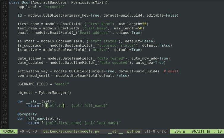 Vim interface window with code