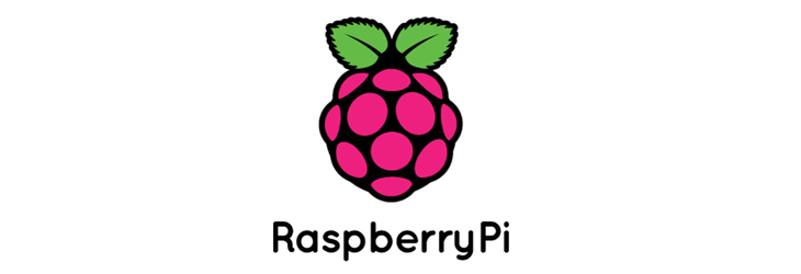 raspberry_pi.png__730x250_q85_crop_subsampling-2_upscale